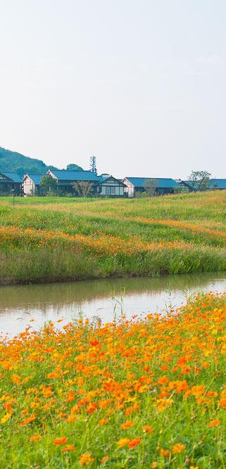 特色目的地_降魔壁【灵山拈花湾预订网】